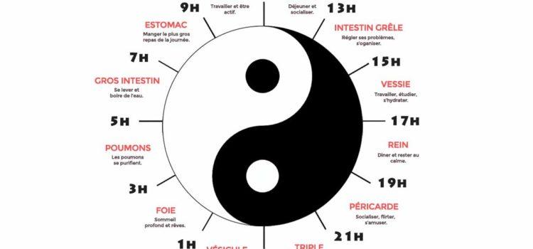 5 choses à savoir sur les biorythmes